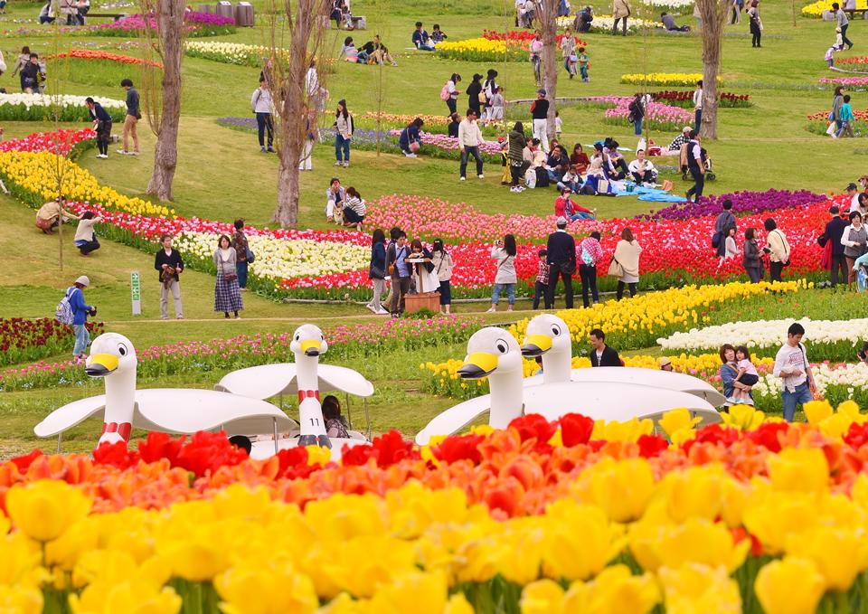 淡路花祭の最初から最後までクイズラリーで商品を当てよう!